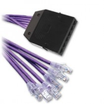 HellermannTyton – Pre-terminated Cassettes, RapidNet™ Category 6 RJ45 Cassette to RJ45 Leads